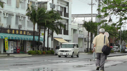 Ishigaki Okinawa Islands 06 Stock Video Footage