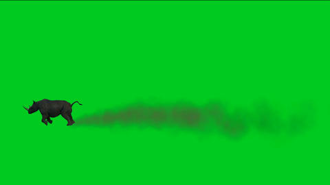 rhino running with dust against green screen.dust Stock Video Footage