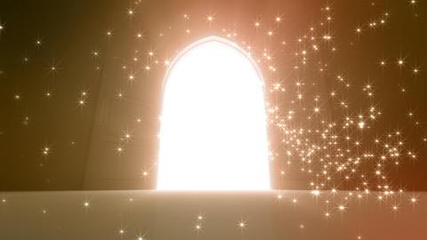 Door Opening CD M1 In 5 HD Stock Video Footage