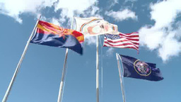 Flags wave in a breeze Footage
