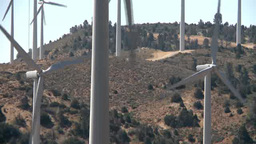 Horses Eating Grass Under Wind Turbines stock footage