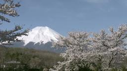 富士山 영상물