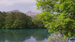 新緑の毘沙門沼と磐梯山 Footage