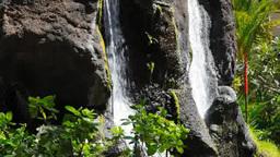 溶岩石と滝の庭 stock footage