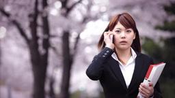桜の下を電話しながら歩くビジネスウーマン ภาพวิดีโอ