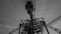 サイバーな人体骨格 Footage