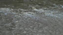 濁流の水面 Footage