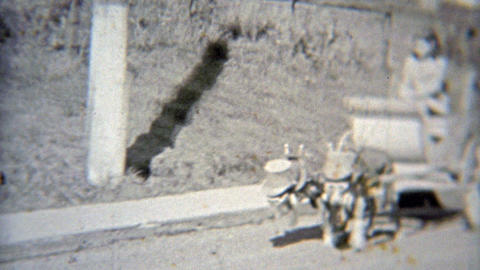 1937: Spoiled girl has carriage pulled by dogs with top hats Footage
