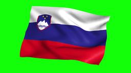 FLAG 01 Republic Of Slovenia スロベニア共和国 stock footage