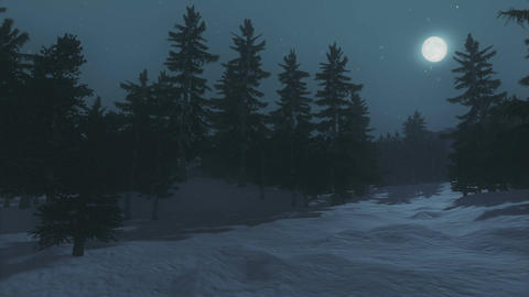 Full moon over the spruce forest in winter Footage