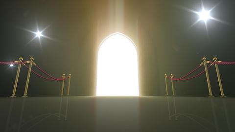 Door Opening CD M1 In 6 Flash HD Stock Video Footage