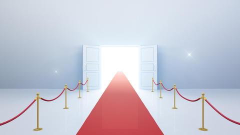 Door Opening DW F2 In 6 Flash HD Stock Video Footage