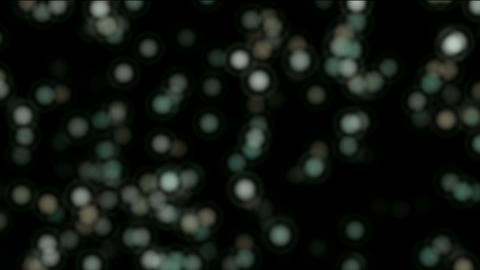 float particles & planktonic,abstract blur circles,cell... Stock Video Footage