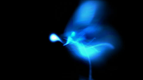 blue rays laser pulse light,smooth silk,energy tech field Stock Video Footage