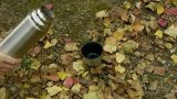 pour water in mug on falling yellow leaves,travel material Footage