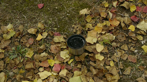 pour water in mug on falling yellow leaves,travel material Stock Video Footage