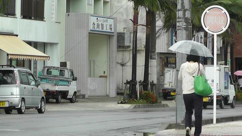 Ishigaki Okinawa Islands 08 Stock Video Footage