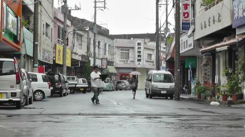 Ishigaki Okinawa Islands 10 Footage
