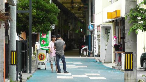 Ishigaki Okinawa Islands 21 Stock Video Footage