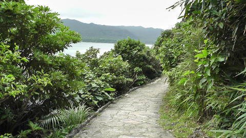 Japanese Garden 05 seaside Stock Video Footage
