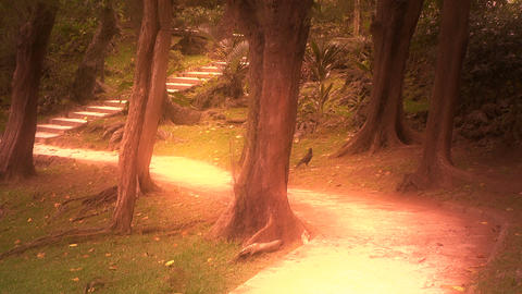 Japanese Garden stylized 04 Stock Video Footage