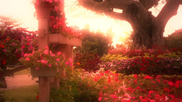 Japanese Garden stylized 05 Stock Video Footage