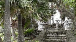 Japanese Shrine 01 Footage