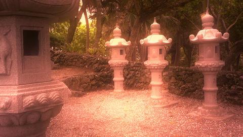 Japanese Shrine in Japanese Garden stylized 10 Live Action