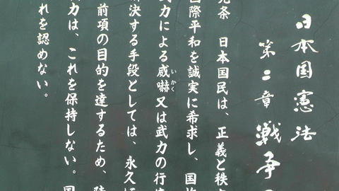 Japanese Text on Stone 04 Stock Video Footage