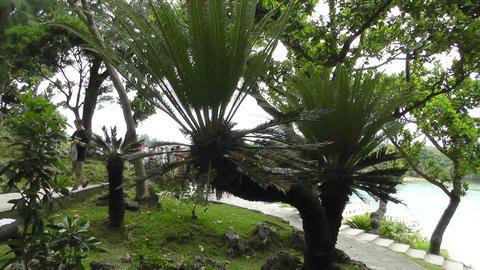 Kabira Beach Bay Ishigaki Okinawa Islands 12 pan handheld Stock Video Footage