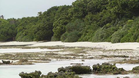 Okinawa Islands Beach 06 Footage