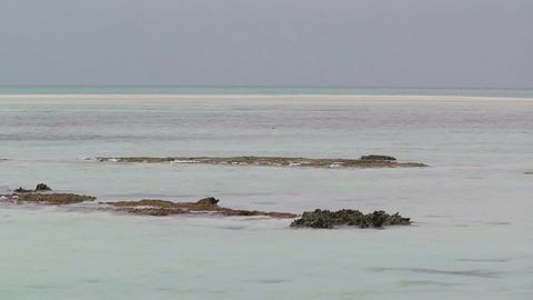 Okinawa Islands Beach 09 Stock Video Footage