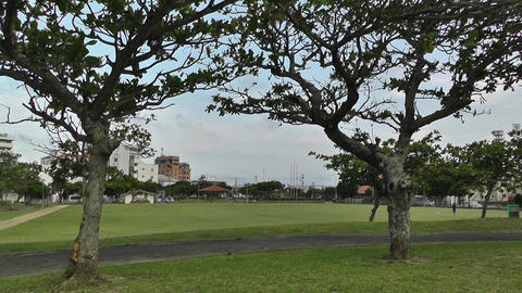 Park in Okinawa Islands 01 Stock Video Footage