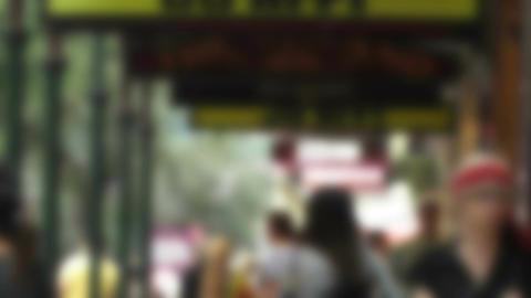 Pedestrians Blurred 60fps native slowmotion 04 Footage