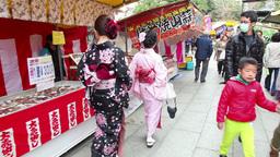 5of 10 People , geisha , shops , Maruyama koen Park , Kyoto , Japan , Asia Footage