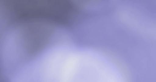 Big Bokeh Purple Beaty Movements 4K Stock Video Footage