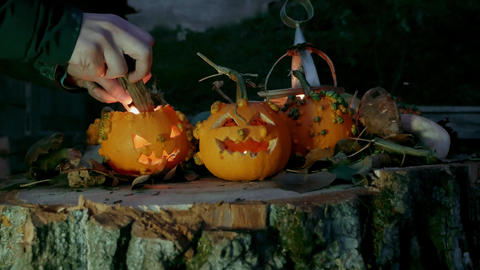Girl placing a candle in a Halloween pumpkins over a tree trunk Footage