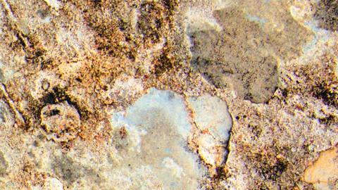 Warm Coloured Textured Grudge Background Footage
