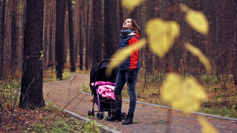 Walk With The Child In Autumn Forest stock footage