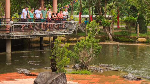 tourists stand in pavilion watch crocodiles in tourist park Live Action