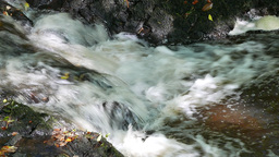 Flowing water over rocks Footage