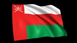 Flag1-a27-Oman stock footage