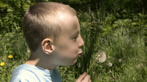 Boy blowing dandelion seeds Footage