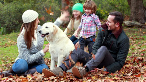 Family with their dog on autumns day in park Footage