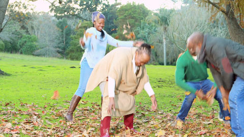 Happy family tossing autumn leaves Footage