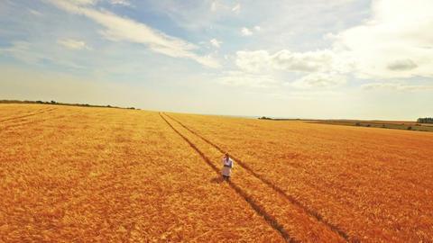 Aerial view of scientist walking through fields Filmmaterial