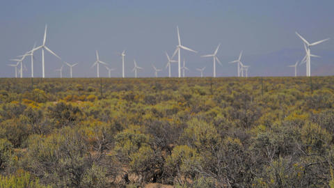 Scene of a windfarm in the desert Footage