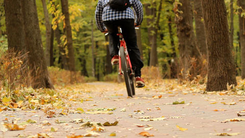 Riding A Bicycle In Autumn Park stock footage