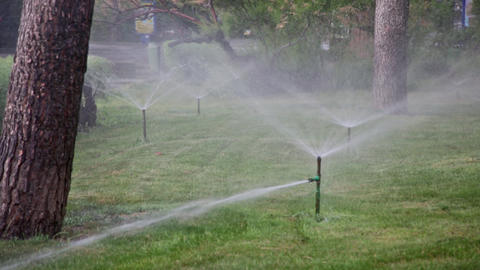 Watering of lawns in park by means of water sprays Footage