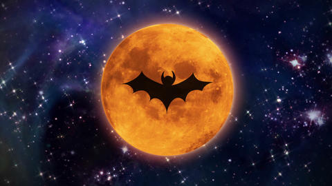 bat moon in the space large size Stock Video Footage